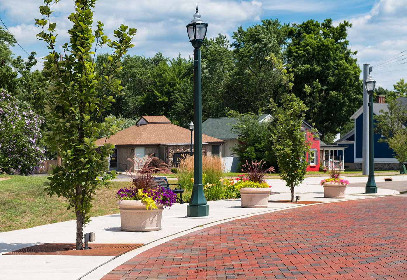 Dowagiac Quality of Life streetscape with trees