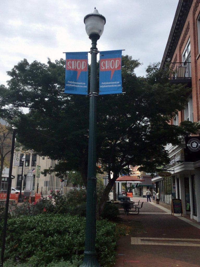 Kalamazoo Sidewalk Assessment Lightpost