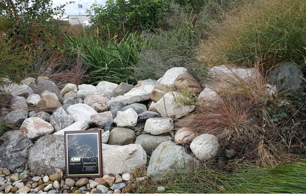 Wightman Rain Garden with Award