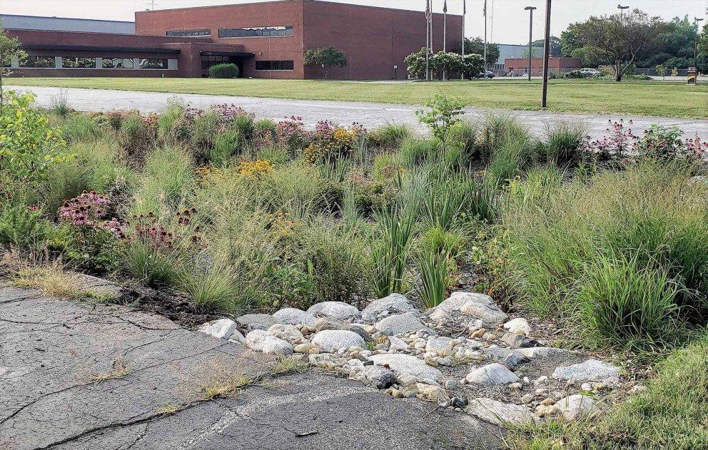 Ox Creek Rain Garden Parking Lot