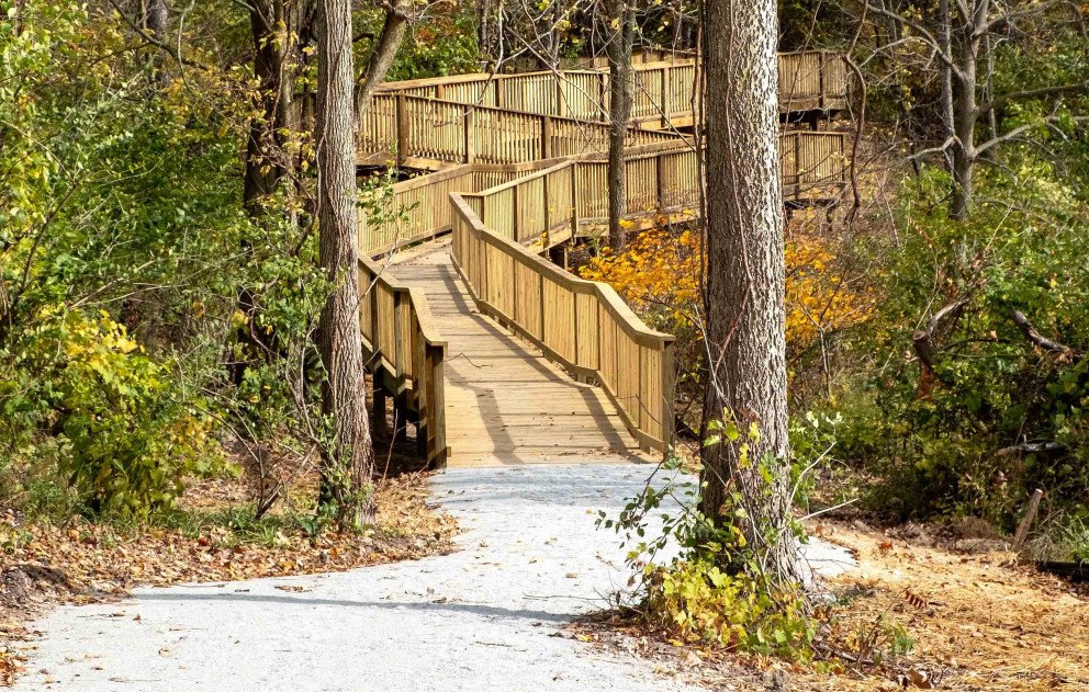 Bacon Park Wood Walkway