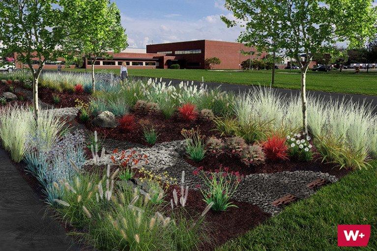 Wightman Rain Garden Perspective Rendering