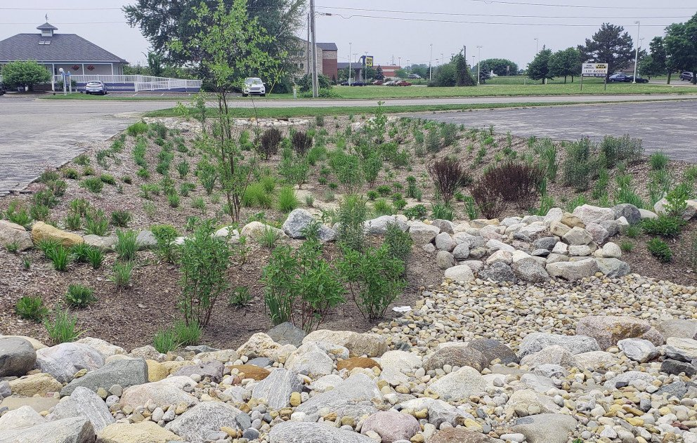 Wightman Rain Garden on Pipestone Road
